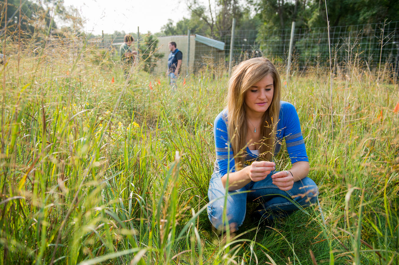 Wildlife and fisheries sciences ecology management of for Fish and wildlife management degree