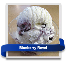 Blueberry Revel ice cream