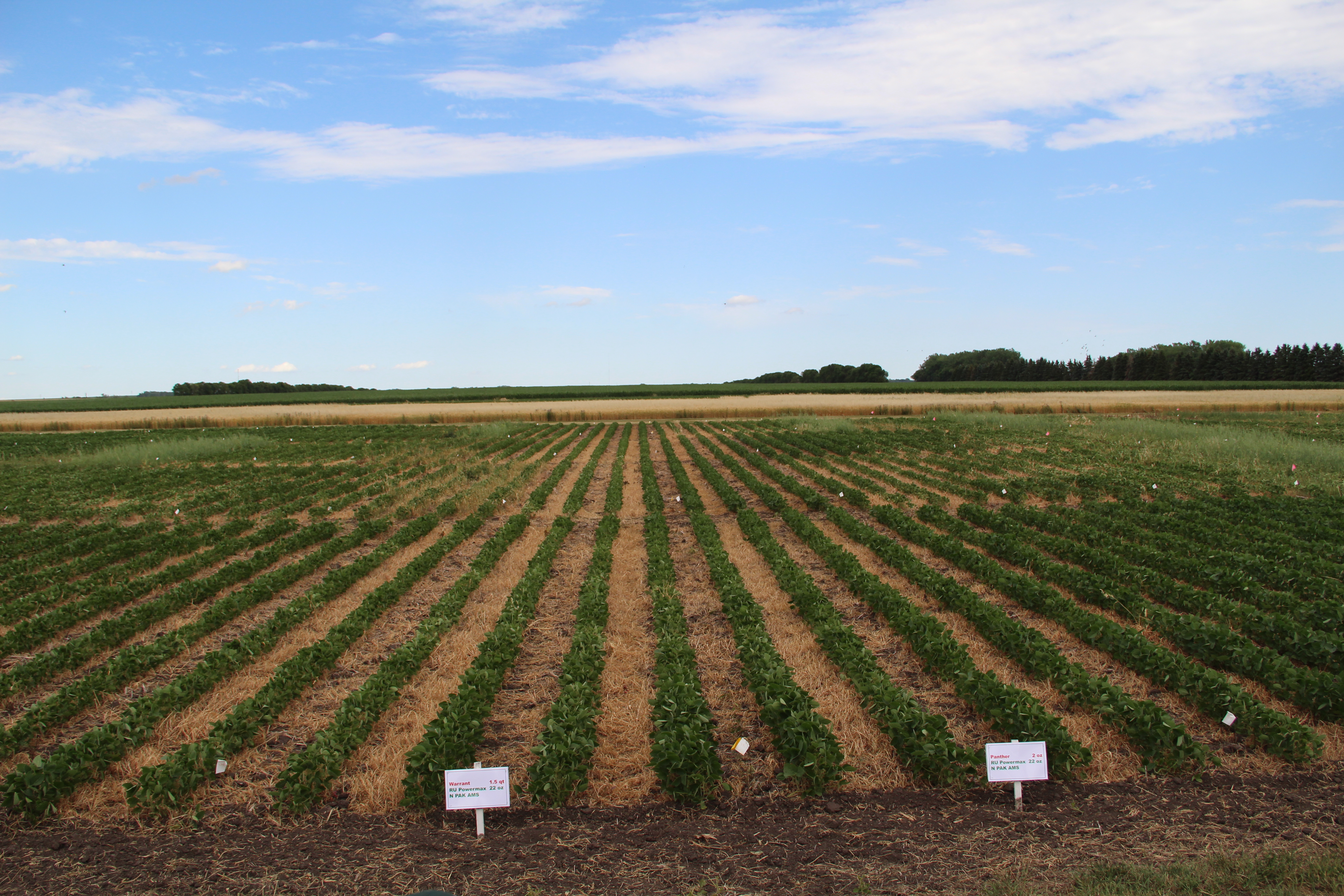 Northeast Research Farm Field Day 2016