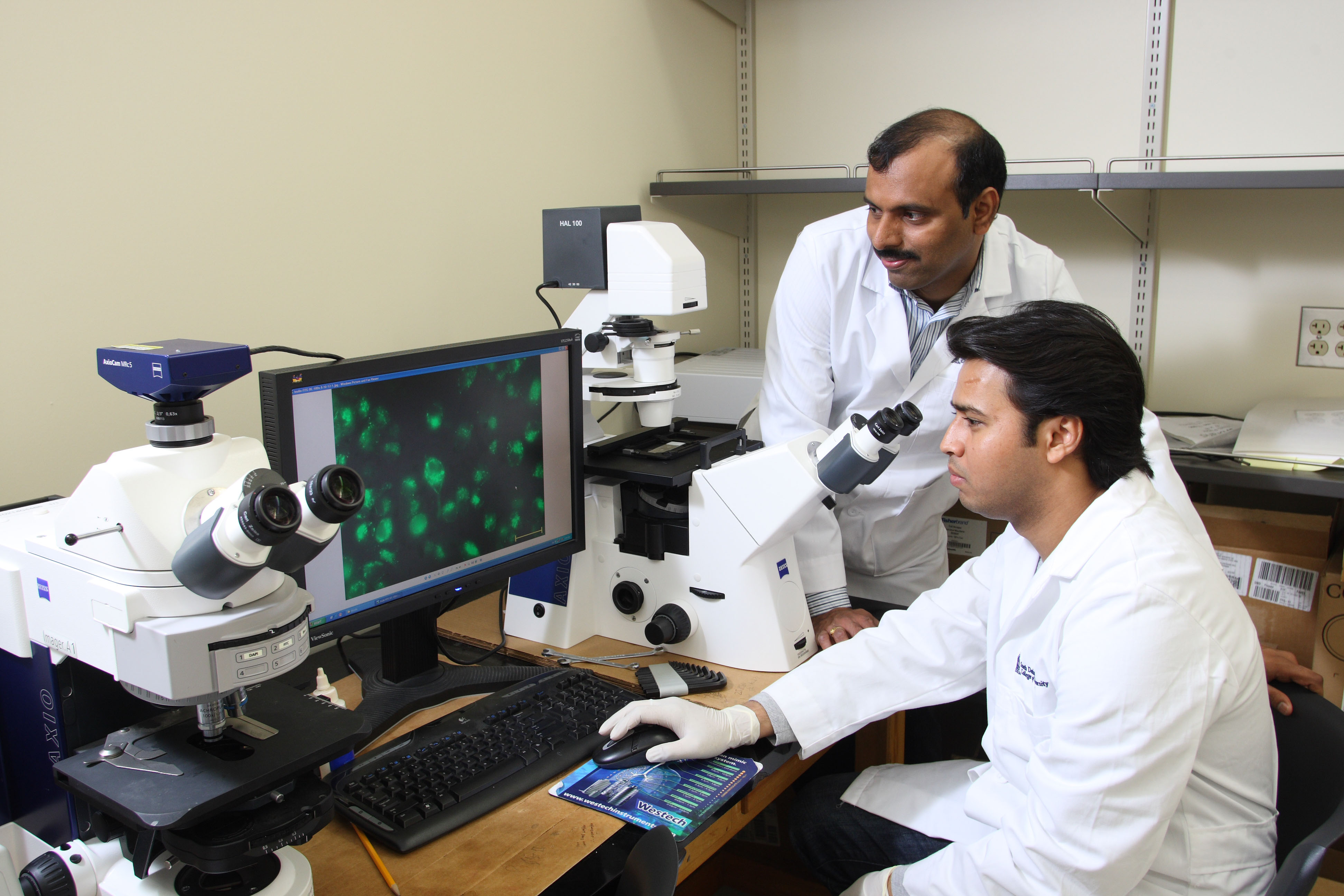 Faculty and students working in a lab