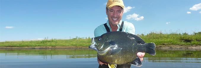 Pond management south dakota state university for Sjfc fish r net