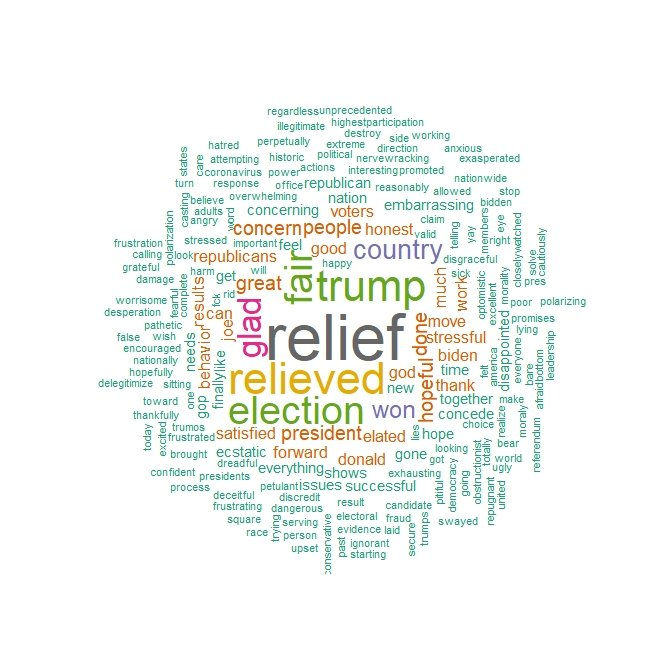 """alt text: word cloud of Biden voters showing most common words about the 2020 election were ""relief"" ""relieved"" ""fair"""""