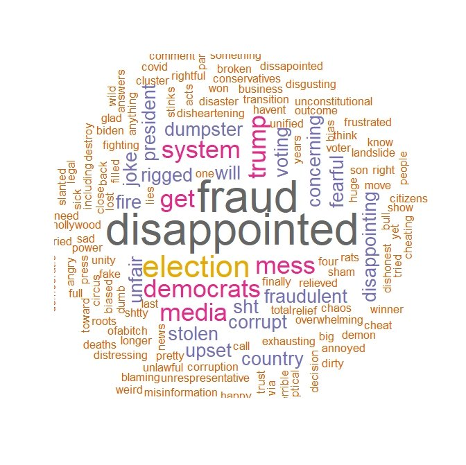 """word cloud of Trump voters showing most common words about the 2020 election were ""disappointed"" ""fraud"" ""mess"" """
