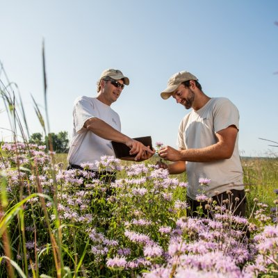 Student and instructor stand in a field looking at plants.