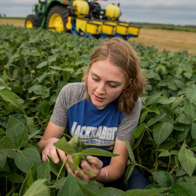 student looking at soybeans