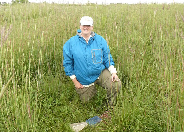 Entomology student in prairie grass