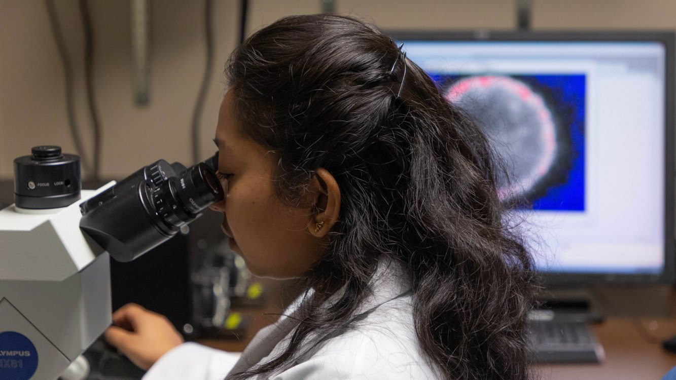 Grad student using microscope