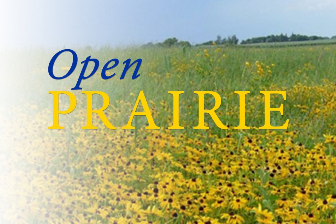 Field of sunflowers with Open PRAIRIE text