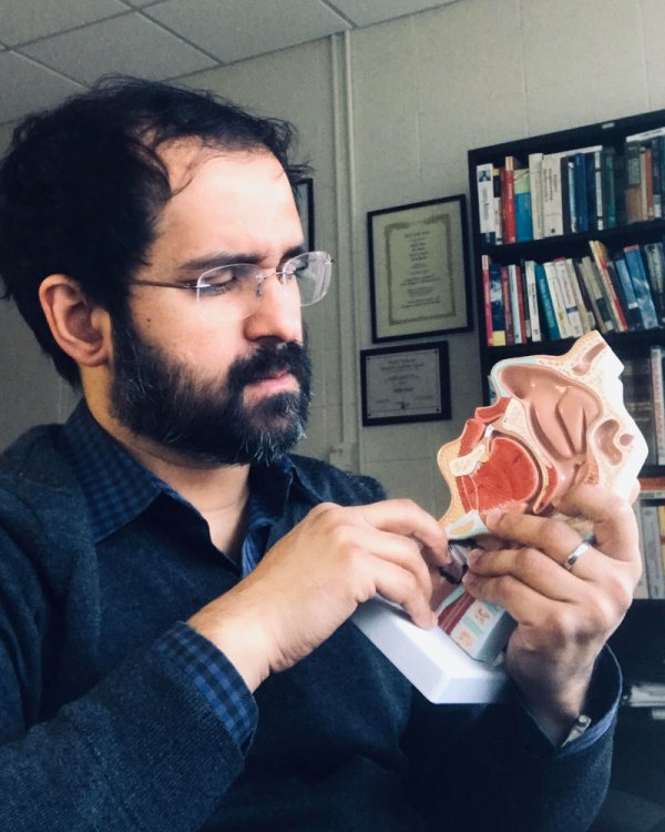 Saikat Basu examines a model of human sinuses