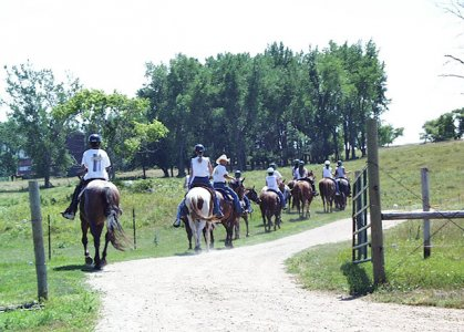 Students learning to ride horses