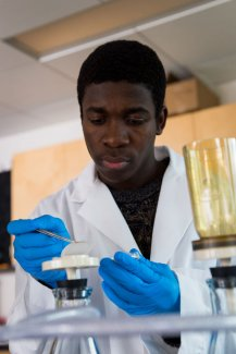 Master's student Louis Amegbletor removes a filter that collects bacteria.