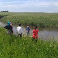 Skunk Creek sampling