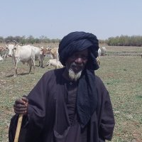 pastoralist in Senegal