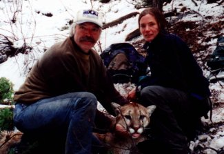 Jenks and Ph.D. graduate student, Dorothy Wells, capture an adult mountain lion in the southern Black Hills in 2000.