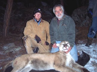 Jenks and Ph.D. student, Brian Jensen, capture a mountain lion in Custer State Park during a large mammal ecology and management class field trip in 2008.