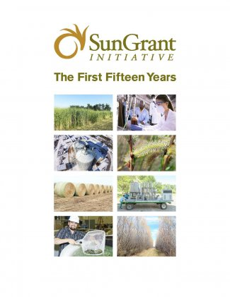 The First Fifteen Years Report